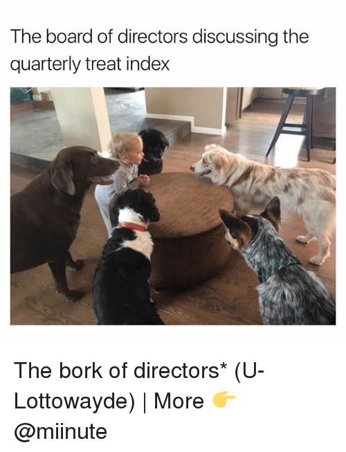 Børk: The board of directors discussing the  quarterly treat index The bork of directors* (U-Lottowayde) | More 👉 @miinute