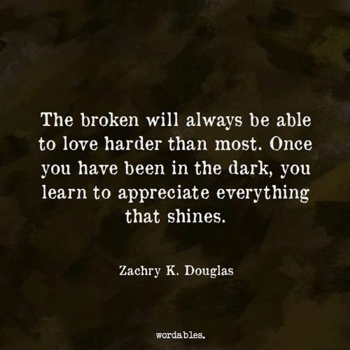 Shines: The broken will always be able  to love harder than most. Once  you have been in the dark, you  learn to appreciate everything  that shines.  Zachry K. Douglas  wordables.