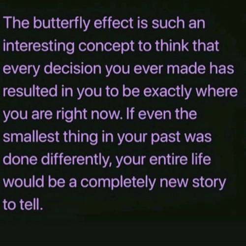 Butterfly: The butterfly effect is such an  interesting concept to think that  every decision you ever made has  resulted in you to be exactly where  you are right now. If even the  smallest thing in your past was  done differently, your entire life  would be a completely new story  to tell.