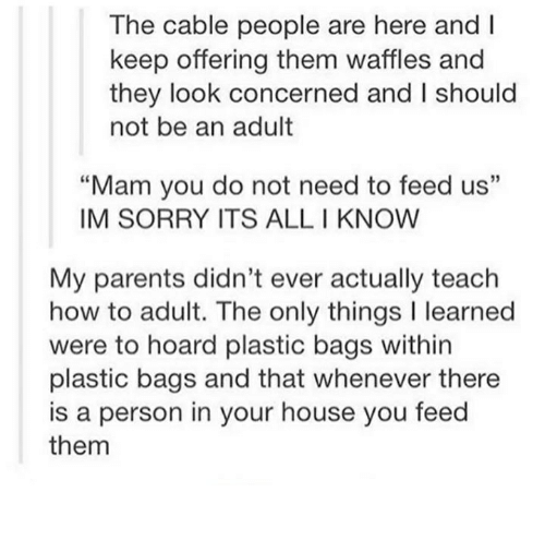 """Parents, Sorry, and House: The cable people are here and  keep offering them waffles and  they look concerned and l should  not be an adult  """"Mam you do not need to feed us""""  IM SORRY ITS ALL KNOW  My parents didn't ever actually teach  how to adult. The only things l learned  were to hoard plastic bags within  plastic bags and that whenever there  is a person in your house you feed  them"""
