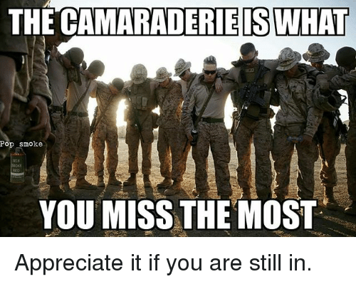 Memes, Pop, and Appreciate: THE CAMARADERIEISWHAI  Pop smoke  YOU MISS THE MOST Appreciate it if you are still in.