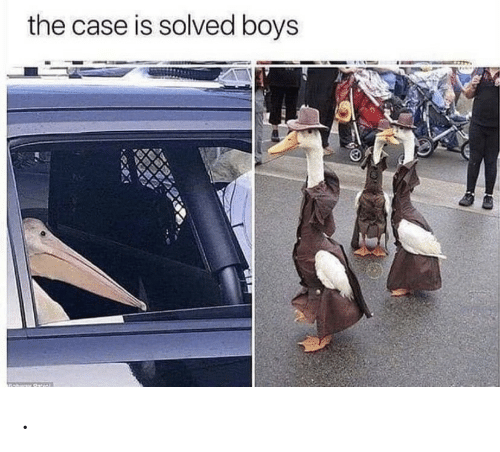 Solved: the case is solved boys .
