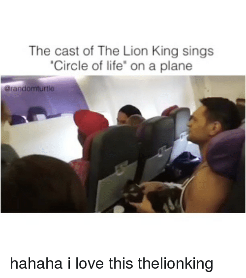 Funny Circle Of Life Meme : Funny casted memes of on sizzle gag