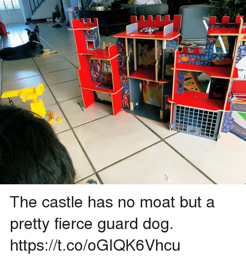 fierce: The castle has no moat but a pretty fierce guard dog. https://t.co/oGIQK6Vhcu
