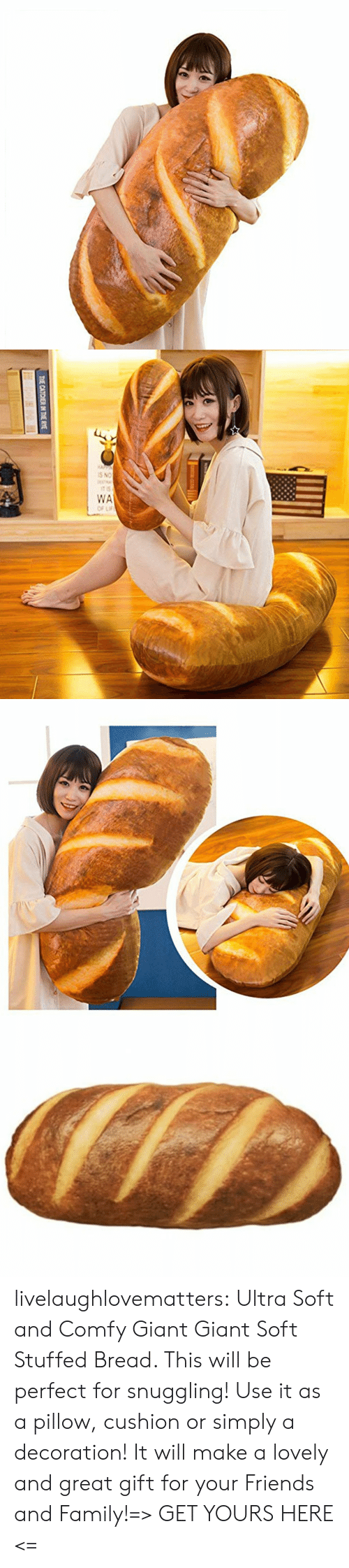 stuffed: THE CATCHER IN THE RYE livelaughlovematters:  Ultra Soft and Comfy Giant Giant Soft Stuffed Bread. This will be perfect for snuggling! Use it as a pillow, cushion or simply a decoration! It will make a lovely and great gift for your Friends and Family!=> GET YOURS HERE <=