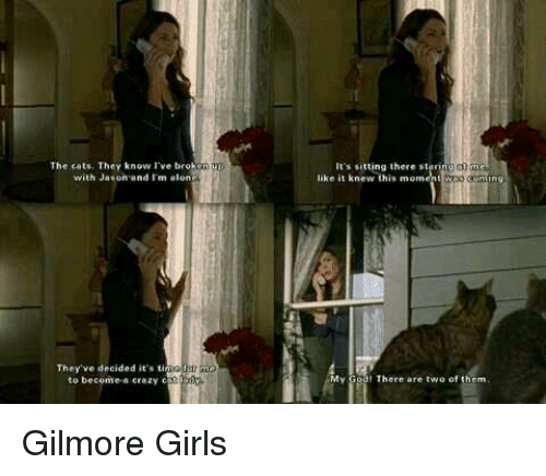Gilmore Girls: The cats. They know I've br  with Jason and I'm alon  They ve decided it's  tin  to become a crazy c00  It's sitting there stering  like it knew this moment ng  My  God! There are two of them Gilmore Girls