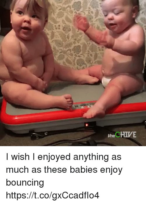 the chives: the CHIVE I wish I enjoyed anything as much as these babies enjoy bouncing https://t.co/gxCcadfIo4
