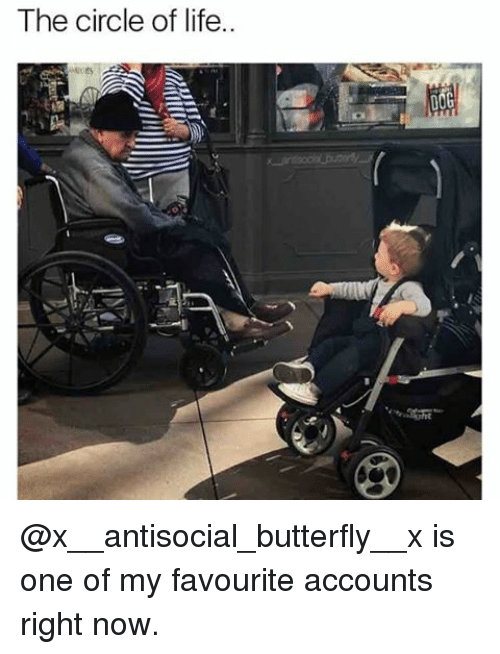 Antisociable: The circle of life.. @x__antisocial_butterfly__x is one of my favourite accounts right now.