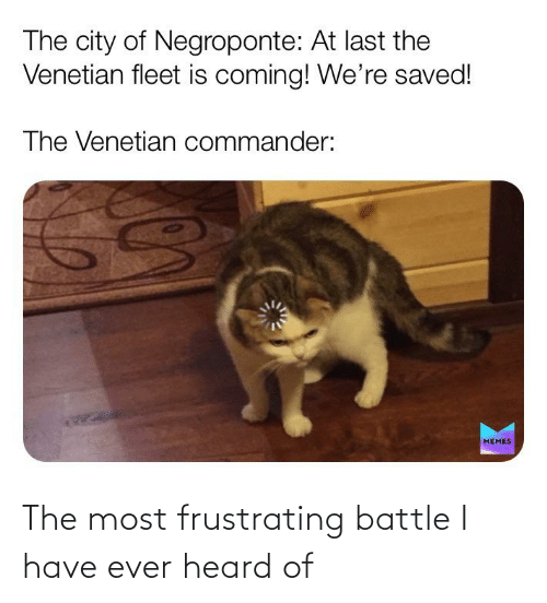 Venetian: The city of Negroponte: At last the  Venetian fleet is coming! We're saved!  The Venetian commander:  MEMES The most frustrating battle I have ever heard of