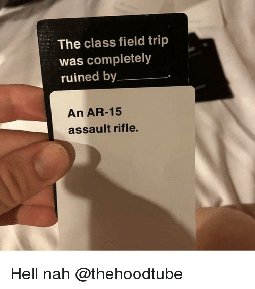 assault rifle: The class field trip  was completely  ruined by  An AR-15  assault rifle. Hell nah @thehoodtube