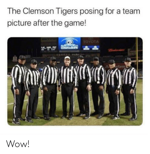 clemson tigers: The Clemson Tigers posing for a team  picture after the game!  TOYOTA  Padactsnr  Farm Wow!