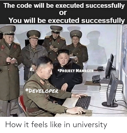 It Feels: The code will be executed successfully  or  You will be executed successfully  *PROJECT MANAGER  *DEVELOPER How it feels like in university