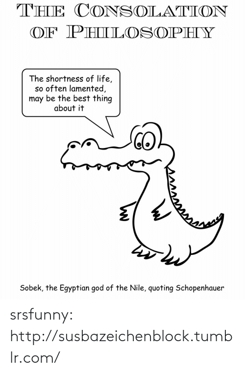 egyptian god: THE CONSOLATION  OF PHILOSOPHY  The shortness of life,  so often lamented,  may be the best thing  about it  Sobek, the Egyptian god of the Nile, quoting Schopenhauer srsfunny:  http://susbazeichenblock.tumblr.com/