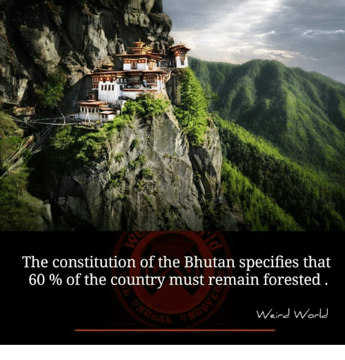 Bhutan: The constitution of the Bhutan specifies that  60% of the country must remain forested  Weird World