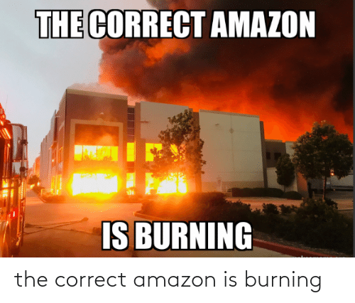 Correct: the correct amazon is burning