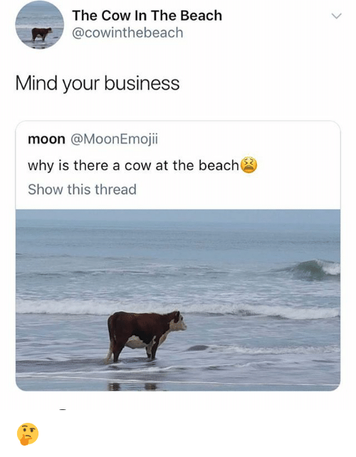 Memes, Beach, and Business: The Cow In The Beach  @cowinthebeach  Mind your business  moon @MoonEmojii  why is there a cow at the beach  Show this thread 🤔