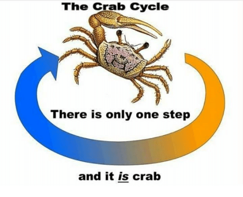 crabbing: The Crab Cycle  There is only one step  and it is crab