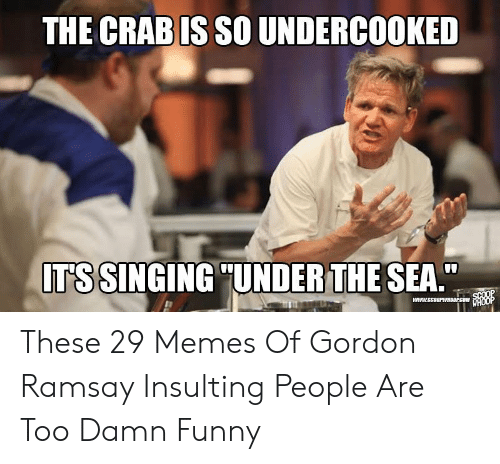 "Funny Racist Memes: THE CRABIS SO UNDERCOOKED  ITS SINGING ""UNDER THE SEA. These 29 Memes Of Gordon Ramsay Insulting People Are Too Damn Funny"