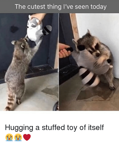 Memes, Today, and 🤖: The cutest thing I've seen today Hugging a stuffed toy of itself 😭😭❤️