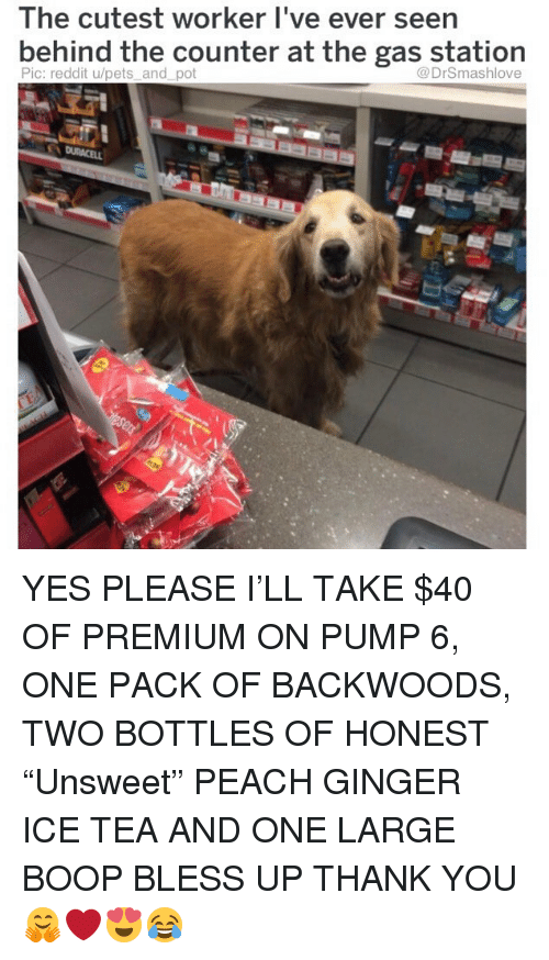 """Bless Up, Memes, and Reddit: The cutest worker I've ever seen  bernind the counter at the gas station  Pic: reddit u/pets and pot  @DrSmashlove YES PLEASE I'LL TAKE $40 OF PREMIUM ON PUMP 6, ONE PACK OF BACKWOODS, TWO BOTTLES OF HONEST """"Unsweet"""" PEACH GINGER ICE TEA AND ONE LARGE BOOP BLESS UP THANK YOU 🤗❤️😍😂"""
