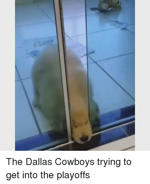 Dallas Cowboys, Nfl, and Dallas Cowboys: The Dallas Cowboys trying to get into the playoffs