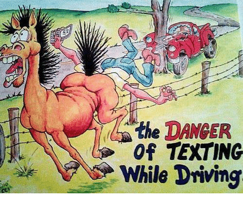 Driving, Memes, and Texting: the DANGER  of TEXTING  While Driving