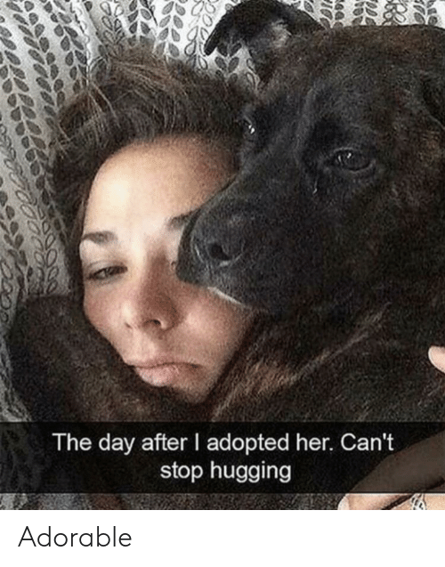 hugging: The day after I adopted her. Can't  stop hugging  e4 Adorable