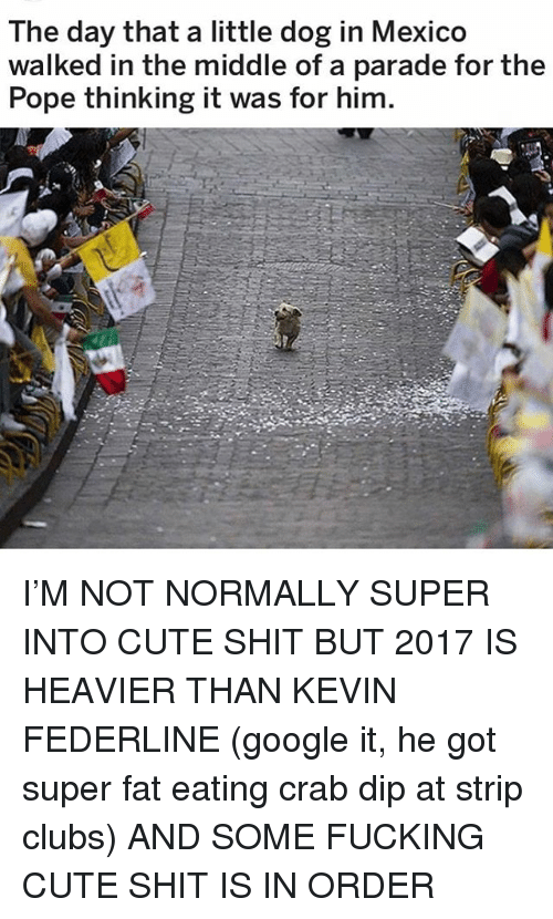 Cute, Fucking, and Google: The day that a little dog in Mexico  walked in the middle of a parade for the  Pope thinking it was for him. I'M NOT NORMALLY SUPER INTO CUTE SHIT BUT 2017 IS HEAVIER THAN KEVIN FEDERLINE (google it, he got super fat eating crab dip at strip clubs) AND SOME FUCKING CUTE SHIT IS IN ORDER