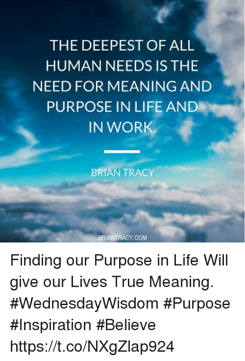 what gives human life meaning 02042015 read our favorite bible verses about life and scripture quotes to discover your meaning and  the life of human flesh that  life bible verses.