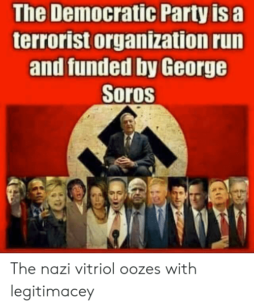 George Soros: The Democratic Party is a  terrorist organization run  and funded by George  Soros The nazi vitriol oozes with legitimacey