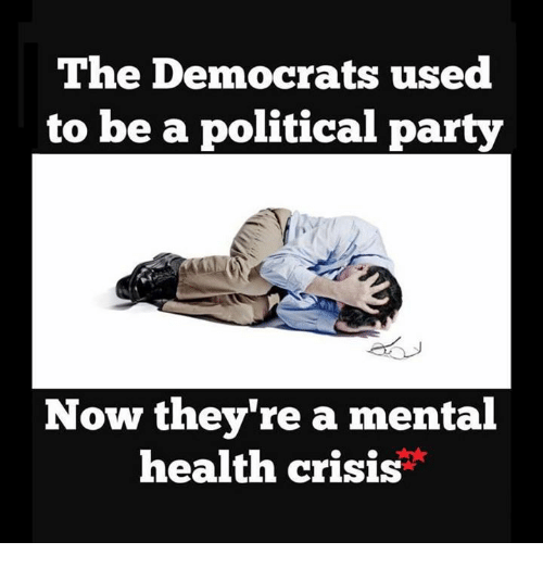 political parties: The Democrats used  to be a political party  Now they're a mental  health crisis