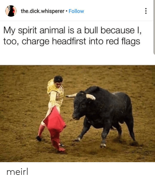The Dick: the.dick.whisperer Follow  My spirit animal is a bull because I,  too, charge headfirst into red flags meirl