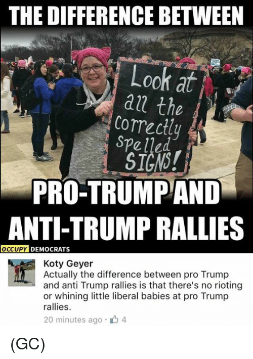 Memes, Riot, and 🤖: THE DIFFERENCE BETWEEN  Look at  the  Correctly  PRO-TRUMP AND  ANTI-TRUMP RALLIES  OCCUPY DEMOCRATS  Koty Geyer  Actually the difference between pro Trump  and anti Trump rallies is that there's no rioting  or whining little liberal babies at pro Trump  rallies  20 minutes ago 4 (GC)