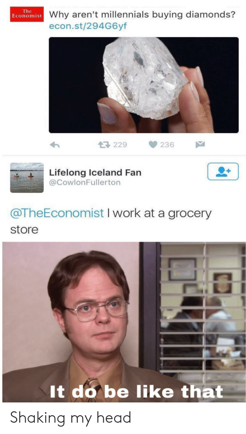 Iceland: The  Economist Why aren't millennials buying diamonds?  econ.st/294G6yf  229  236  Lifelong Iceland Fan  @CowlonFullerton  @TheEconomist I work at a grocery  store  It do be like that Shaking my head