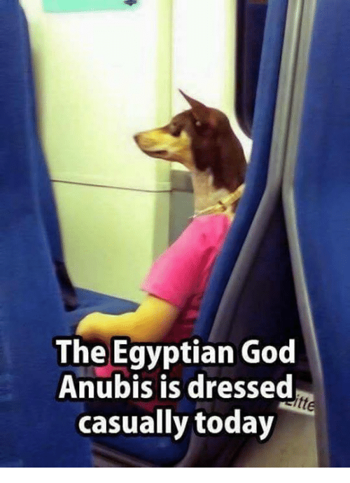 egyptian god: The Egyptian God  Anubis is dressed  casually today