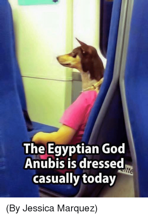 egyptian god: The Egyptian God  Anubis is dressed  casually today (By Jessica Marquez)