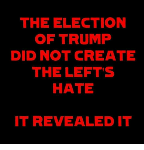 Memes, Trump, and 🤖: THE ELECTION  OF TRUMP  DID NOT CREATE  THE LEFT'S  HATE  IT REVEALED IT
