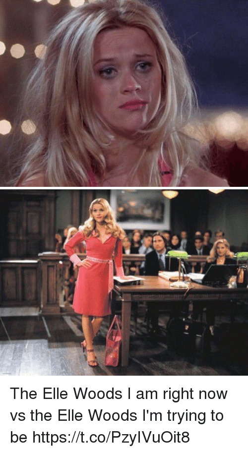 Relatable, Elle, and Woods: The Elle Woods I am right now vs the Elle Woods I'm trying to be https://t.co/PzyIVuOit8