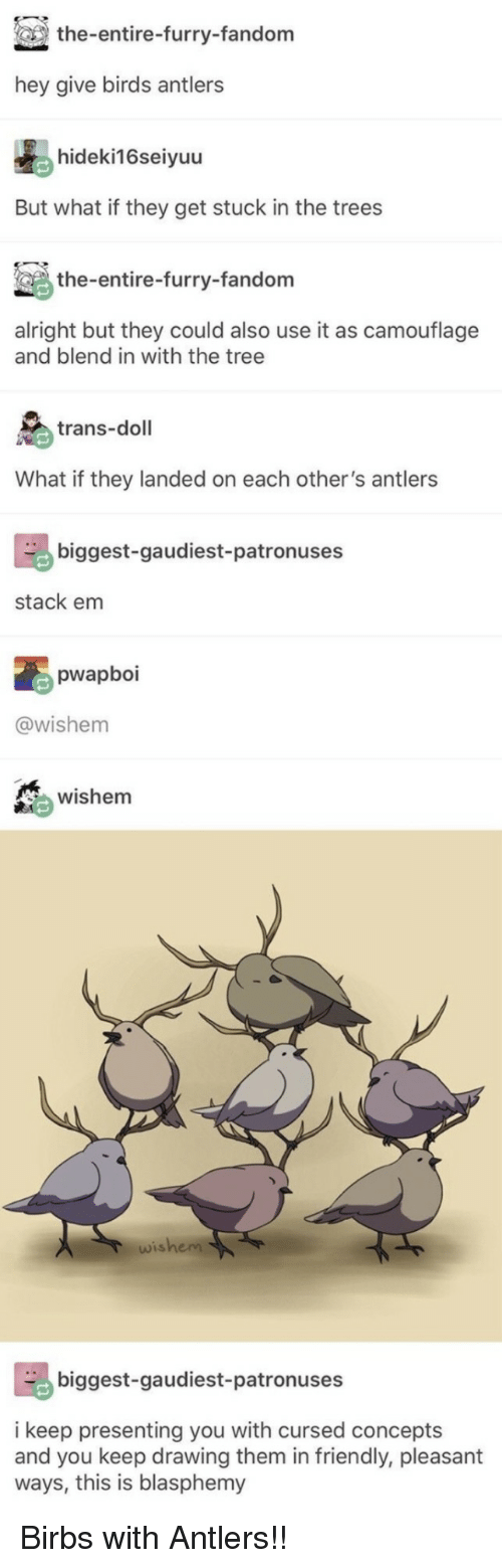 furry fandom: the-entire-furry-fandom  hey give birds antlers  hideki16seiyuu  But what if they get stuck in the trees  the-entire-furry-fandom  alright but they could also use it as camouflage  and blend in with the tree  trans-doll  What if they landed on each other's antlers  biggest-gaudiest-patronuses  stack em  pwapboi  @wishem  wishem  wishem  biggest-gaudiest-patronuses  i keep presenting you with cursed concepts  and you keep drawing them in friendly, pleasant  ways, this is blasphemy Birbs with Antlers!!