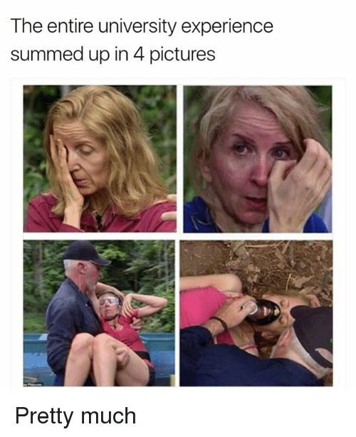 4 Pictures: The entire university experience  summed up in 4 pictures Pretty much