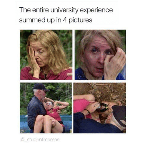 4 Pictures: The entire university experience  summed up in 4 pictures  @studentmemes