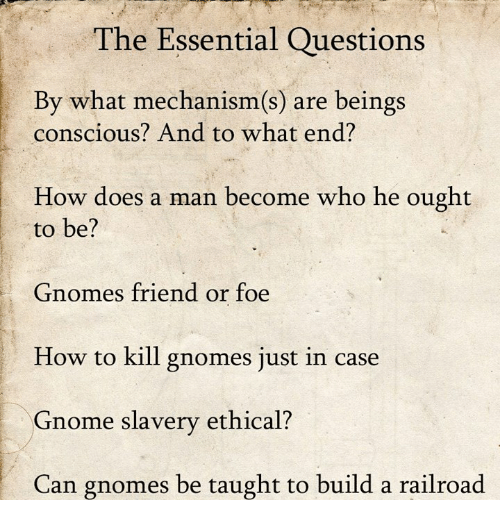 ethical: The Essential Questions  By what mechanism(s) are beings  conscious? And to what end?  How does a man become who he ought  to be?  Gnomes friend or foe  How to kill gnomes just in case  Gnome slavery ethical?  Can gnomes be taught to build a railroad
