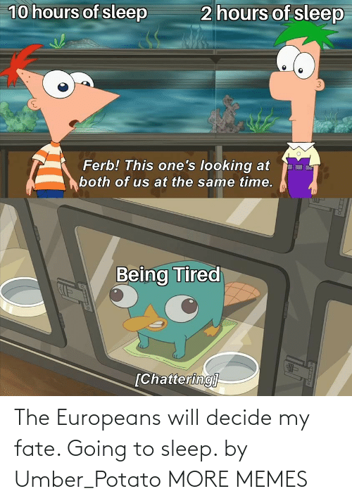 Going To Sleep: The Europeans will decide my fate. Going to sleep. by Umber_Potato MORE MEMES