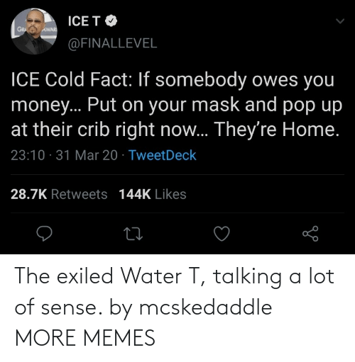 talking: The exiled Water T, talking a lot of sense. by mcskedaddle MORE MEMES