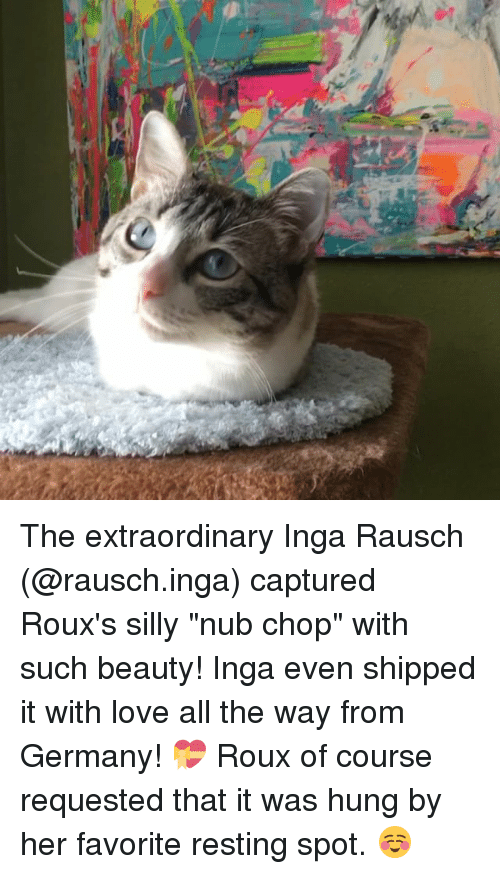 """Beautiful, Memes, and Germany: The extraordinary Inga Rausch (@rausch.inga) captured Roux's silly """"nub chop"""" with such beauty! Inga even shipped it with love all the way from Germany! 💝 Roux of course requested that it was hung by her favorite resting spot. ☺️"""