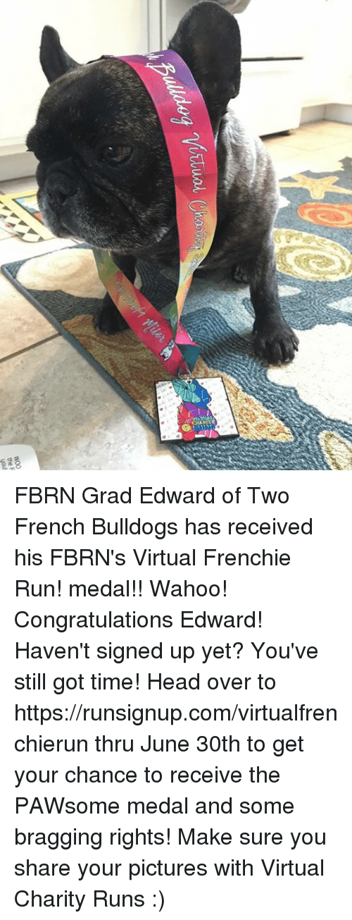 French Bulldogs: the F  you FBRN Grad Edward of Two French Bulldogs has received his  FBRN's Virtual Frenchie Run! medal!! Wahoo! Congratulations Edward!  Haven't signed up yet? You've still got time! Head over to  https://runsignup.com/virtualfrenchierun thru June 30th to get your chance to receive the PAWsome medal and some bragging rights!  Make sure you share your pictures with Virtual Charity Runs :)