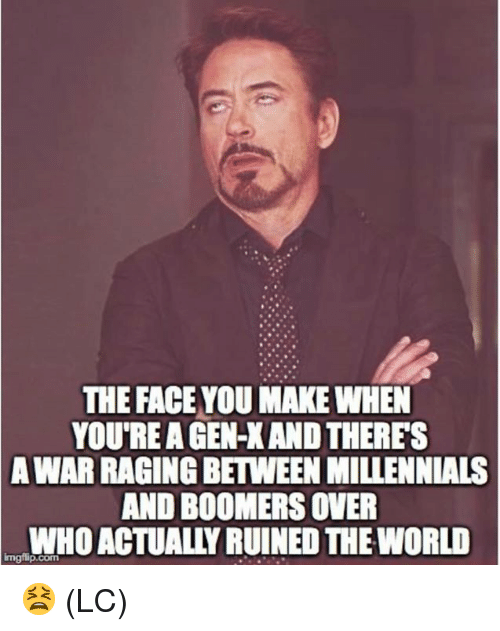 Face You Make: THE FACE YOU MAKE WHEN  YOU'RE A GEN-X AND THERES  WAR RAGING BETWEEN MILLENNIALS  AND BOOMERS OVER  WHO ACTUALLY RUINED THE WORLD  A  Imgilip.com 😫 (LC)