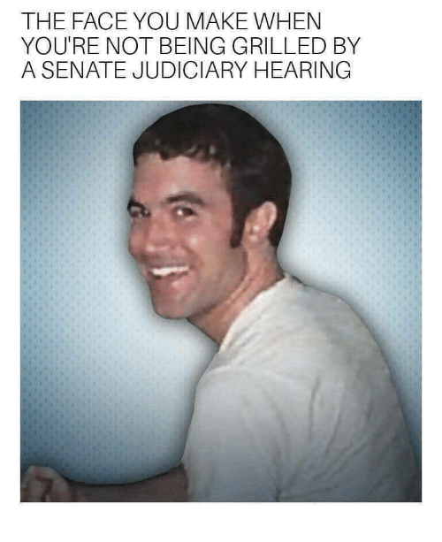 Face You Make: THE FACE YOU MAKE WHEN  YOU'RE NOT BEING GRILLED BY  A SENATE JUDICIARY HEARING