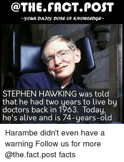 Stephen Hawk: @THE FACT. POST  youR DAJLy DOSE OF KNOWLEDGE  STEPHEN HAWKING was told  that he had two years to live by  doctors back in 1963. Today,  he's alive and is 74-years-old Harambe didn't even have a warning Follow us for more @the.fact.post facts