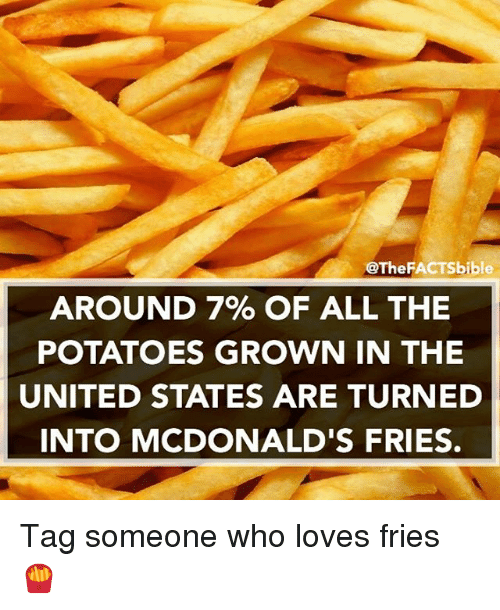 McDonalds, Memes, and Potato: @The FACTSbible  AROUND 7% OF ALL THE  POTATOES GROWN IN THE  UNITED STATES ARE TURNED  INTO MCDONALD'S FRIES. Tag someone who loves fries 🍟
